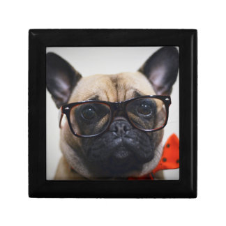 French Bulldog With Glasses And Bow Tie Gift Box
