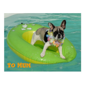 "French Bulldogge postcard ""ton of Mum """