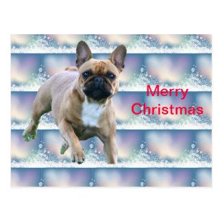 French Bulldoggen Christmas card