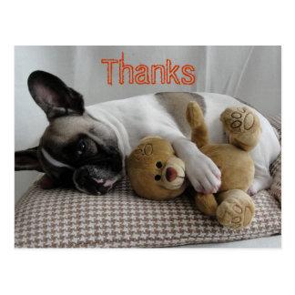 "French Bulldoggen postcard ""Thanks """
