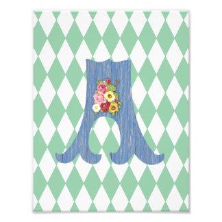 French Country Teal Harlequin Blue Custom Monogram Art Photo