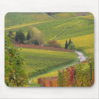 French Countryside Mouse Pad