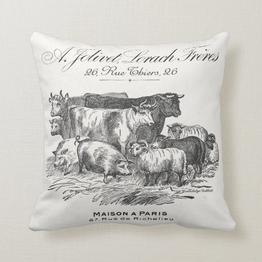 French farm animals reversible pillow with toile.