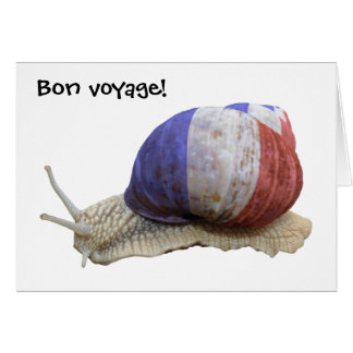 French flag snail card