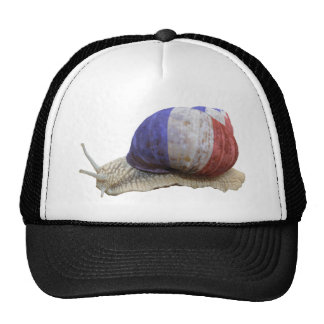 French flag snail trucker hat