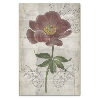 French Floral I Tissue Paper
