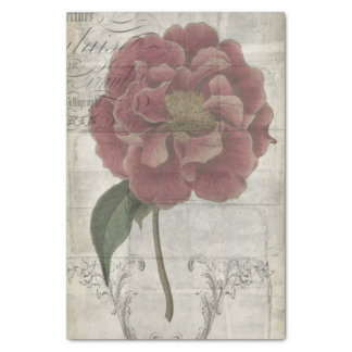 French Floral III Tissue Paper