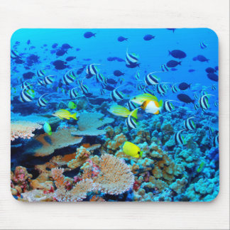 French Frigate Shoals reef with fish. Mouse Pad