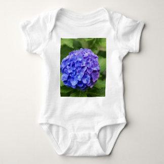 French hydrangea (Hydrangea macrophylla) Baby Bodysuit