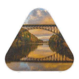 French King Bridge in Fall Speaker