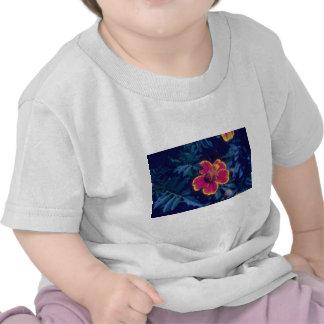 French Marigold (Tagetes Patula) flowers T Shirts
