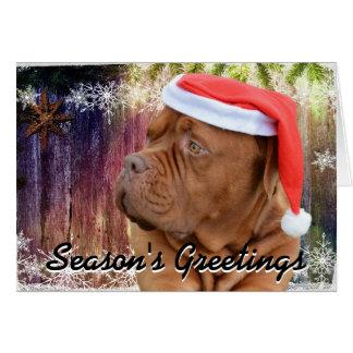 French Mastiff Christmas card