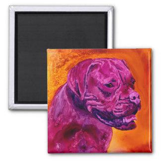 "French Mastiff Magnet - ""Bordeaux"""