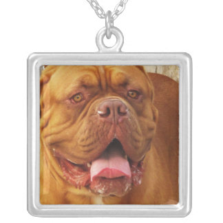 French Mastiff necklace