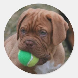 French Mastiff Puppy Round Sticker