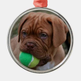 French Mastiff Puppy Silver-Colored Round Ornament