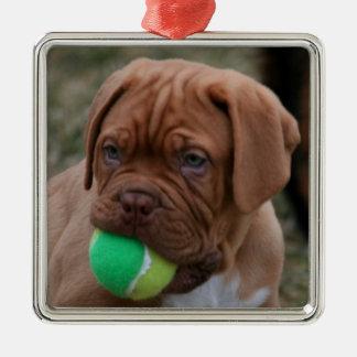 French Mastiff Puppy Silver-Colored Square Ornament