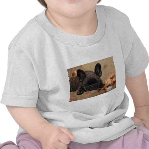 French one. Bulldogge baby shirt