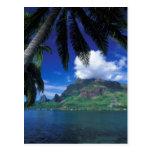 French Polynesia, Moorea. Cooks Bay. Green Postcard