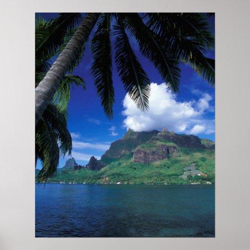 French Polynesia, Moorea. Cooks Bay. Green Poster