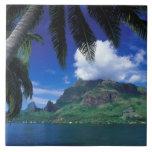 French Polynesia, Moorea. Cooks Bay. Green Tile