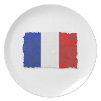 French tricolor plate