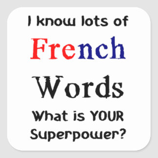 french words square sticker