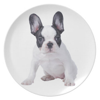 Frenchie - French bulldog puppy Plate