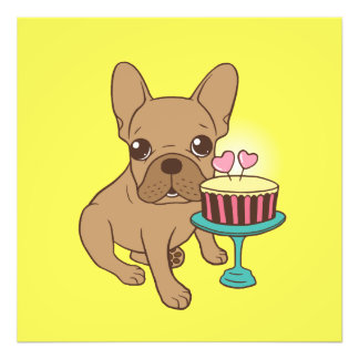 Frenchie has a Birthday Photographic Print