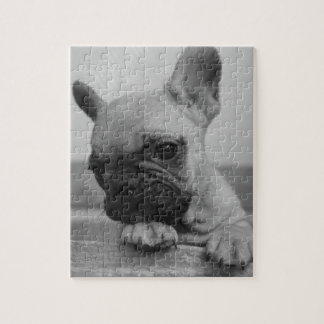 Frenchie puppy jigsaw puzzle