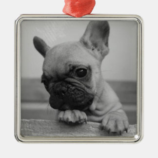 Frenchie puppy metal ornament