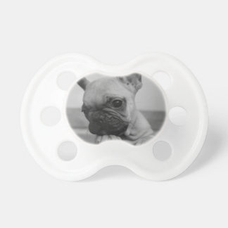Frenchie puppy pacifier