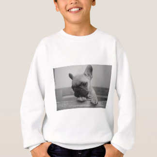 Frenchie puppy sweatshirt