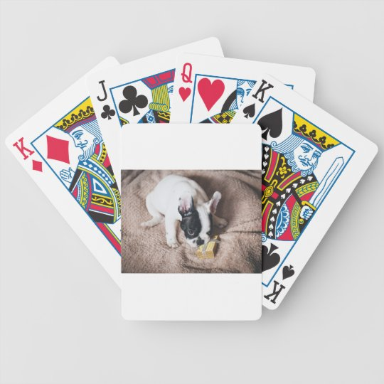 Frenchie With a Gift Bicycle Playing Cards
