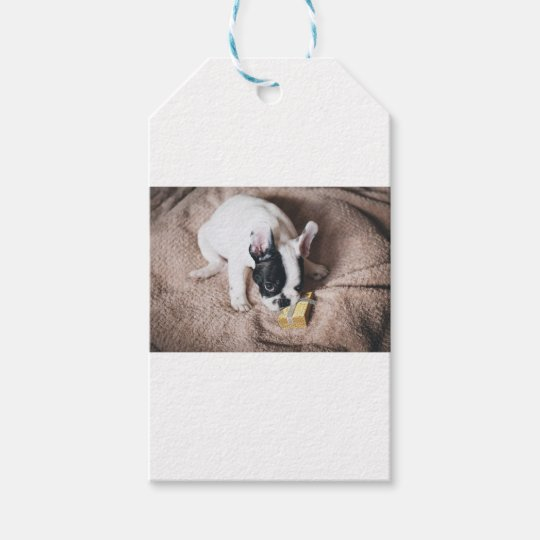Frenchie With a Gift Gift Tags