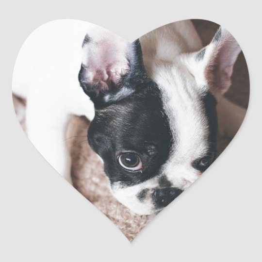 Frenchie With a Gift Heart Sticker