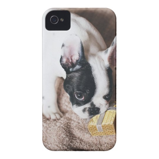 Frenchie With a Gift iPhone 4 Covers