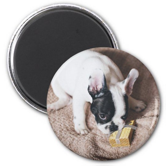 Frenchie With a Gift Magnet