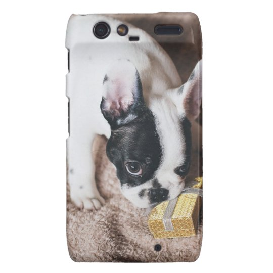 Frenchie With a Gift Motorola Droid RAZR Cases