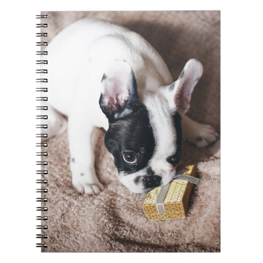 Frenchie With a Gift Notebook