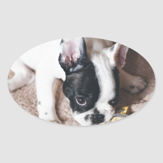 Frenchie With a Gift Oval Sticker