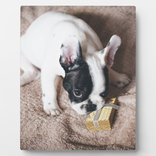 Frenchie With a Gift Plaque