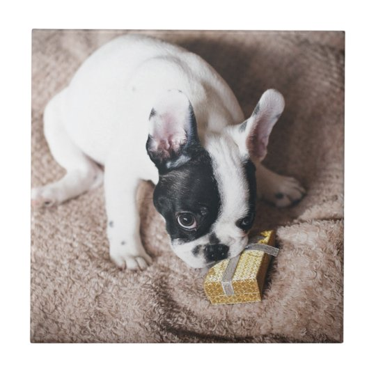 Frenchie With a Gift Tile