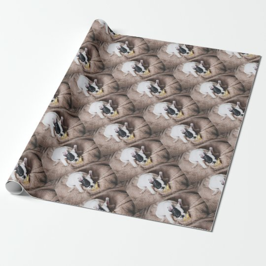 Frenchie With a Gift Wrapping Paper