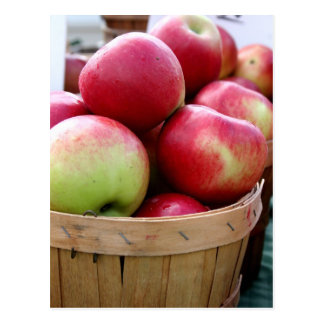 Fresh Apples Postcard