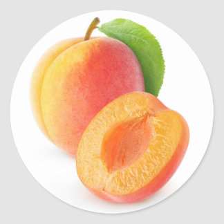 Fresh apricots classic round sticker