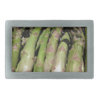 Fresh asparagus hand picked from the garden rectangular belt buckle