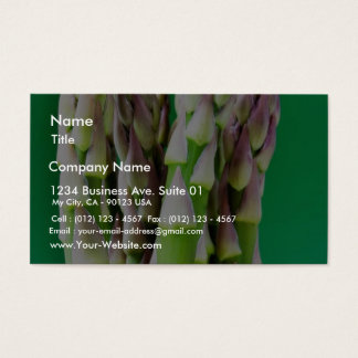 Fresh Asparagus On Green Background Business Card
