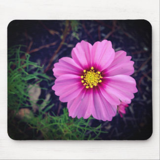 Fresh Bloom Mouse Pad