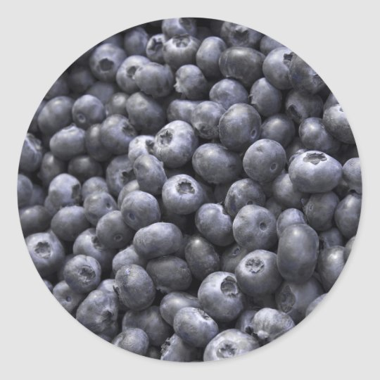 Fresh blueberries classic round sticker